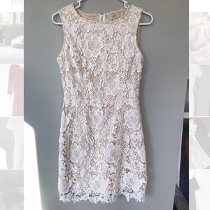 White Lace LOFT Dress Size 4
